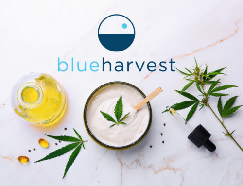 Stress Relief with CBD Products from Blue Harvest™